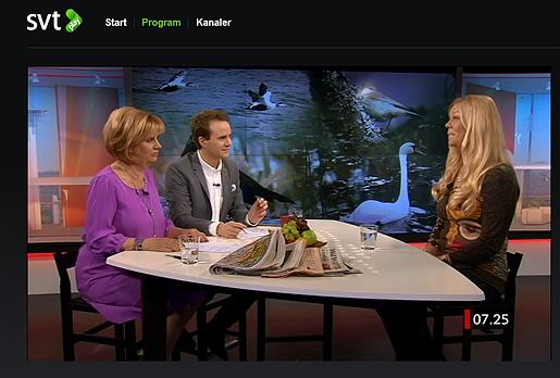 I studion Gomorron Sverige, Svt1