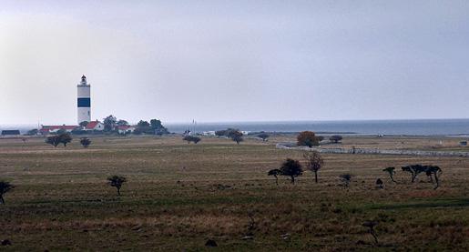 1-Långe-Jan-och-Schäferiängarna