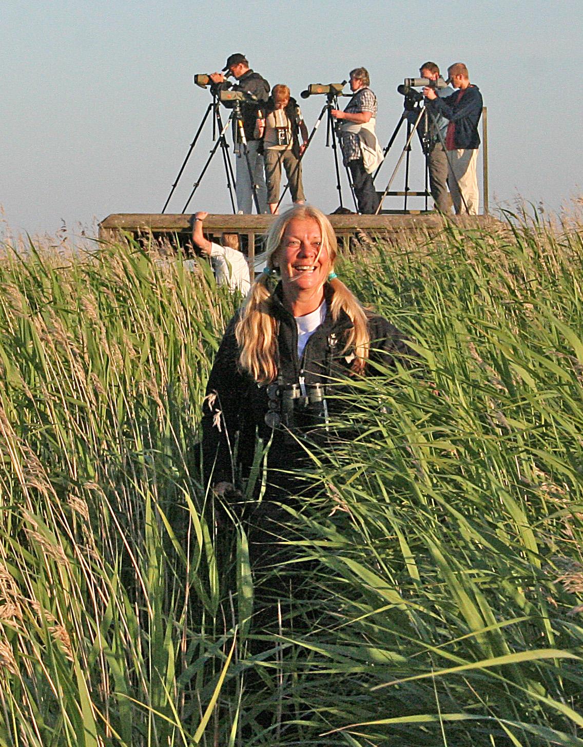 Gigi har kryssat mongolpipare på Öland-09