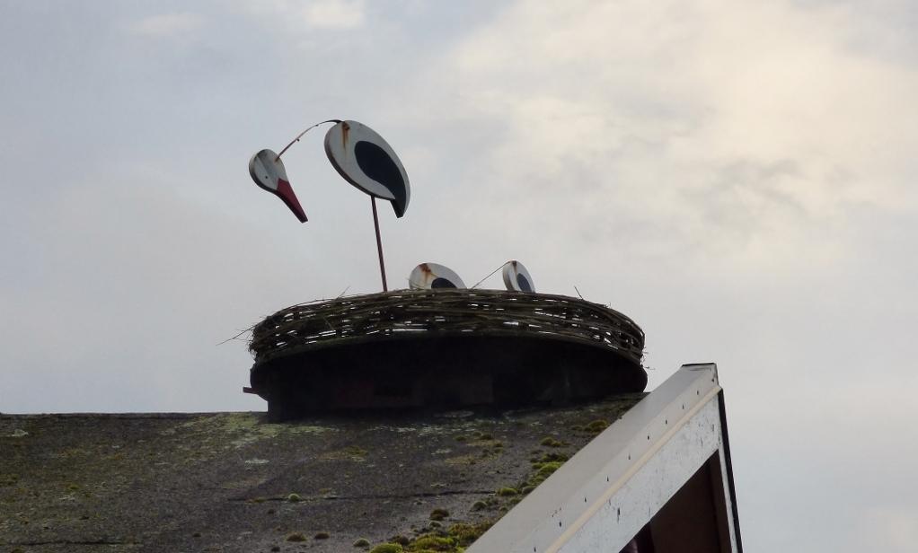 1 stork efter stormen