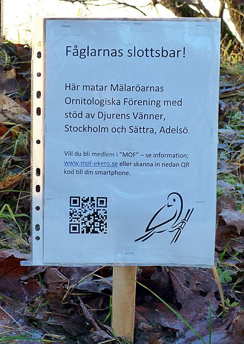 Jag satt upp en provisorisk skylt i väntan på en ny skylt med fågelbilder på, sponsrad av StOF.
