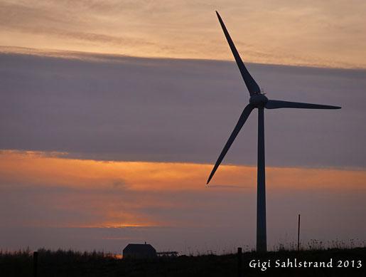 En vanlig syn i Skåne, vindkraftverk.