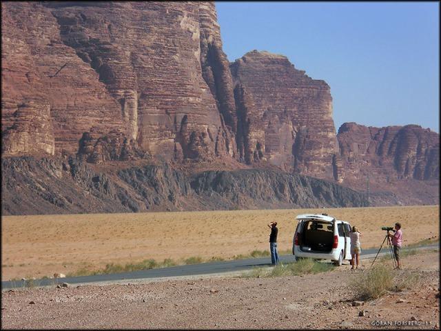 Wadi Rum - inte bara en känd plats från film utan även en plats med spännande fåglar!