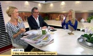Skoj i TV studion - undrar vad jag sa? Eller höll de med att det är jättekul att skåda fåglar? ;-)