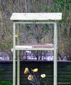 Fågelbordet framifrån. Det går utmärkt att även skippa bordskivan och ha istället olika frö/jordnötsmatare och talgbollar hängande inuti. Eller varför inte en kombination?