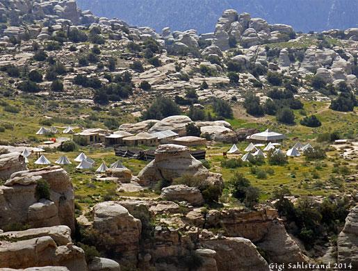 1-P1080505-Dana-nature-camp