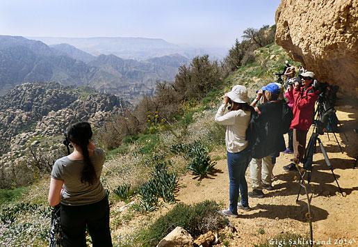 Dana är ett reservat som ligger i bergen. Fantastiskt vackert! Här har vi gått upp för ett berg för maximala utsikten och komma nära alla rovfåglar som sträckte förbi.