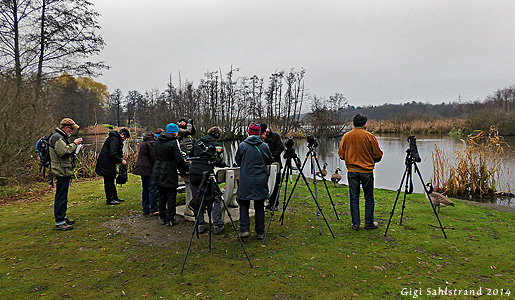 Fika vid Råstasjön