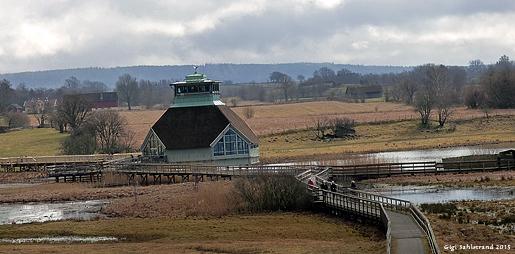Naturrummet vid Hornborgasjön.