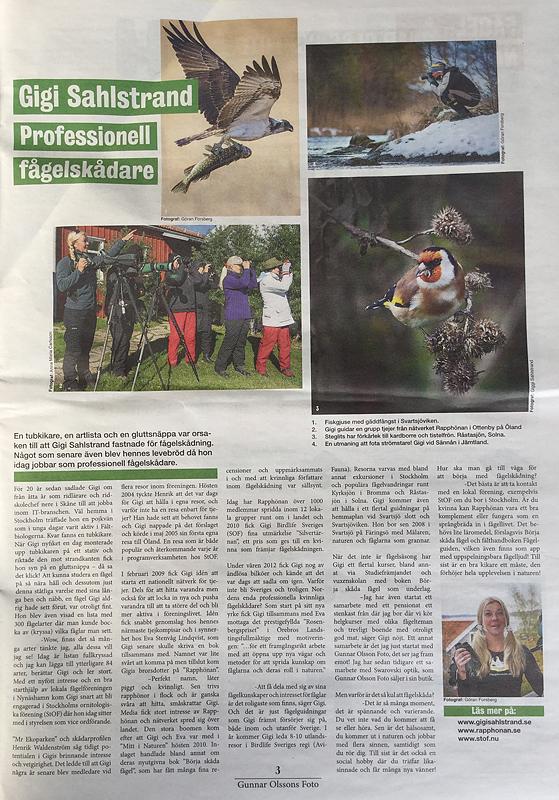 En artikel om mig i Kikarguiden.