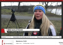 1-TV-4-Nyheterna-2016-01-31-14-48-48
