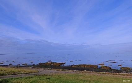 Vadehavet - där hav möter himmel!