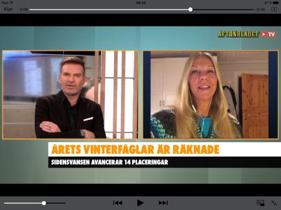Via Skype berättade jag i Aftonbladet TV lite om hur räkningen hade gått. VIK 2017, jan-17